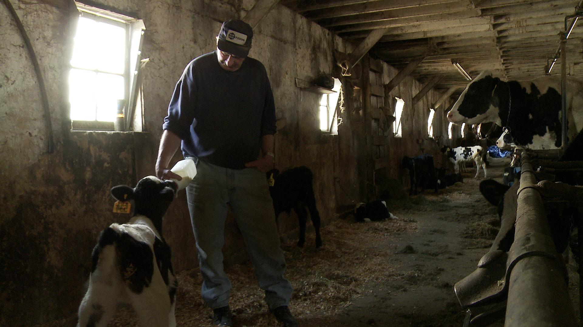 Betting the Farm Cecily Pingree Jason Mann