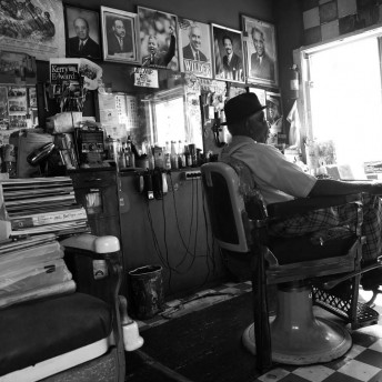 The Barber of Birmingham Gail Dolgin & Robin Fryday